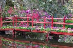 Rote Brücke mit Frühlings-blühenden Blumen stockbild