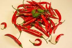 Rote chillis Stockfotografie