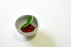 Rote Curry-Paste, gebratener Paprika-Curry Lizenzfreie Stockbilder
