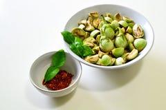 Rote Curry-Paste mit dem thailändischen Auberginen-und Kaffir-Lindenblatt Stockfotos