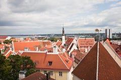Rote Dächer der alten Stadt Tallinn Lizenzfreies Stockbild