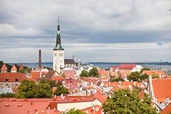Rote Dächer der alten Stadt Tallinn und Oleviste ragen hoch Lizenzfreie Stockfotos