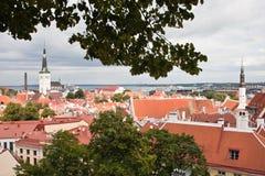 Rote Dächer der alten Stadt Tallinn und Oleviste ragen hoch Stockfotografie