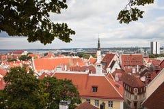 Rote Dächer der alten Stadt von Tallinn Stockfotos