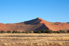 Rote Dünen von sossusvlei Stockbilder