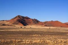 Rote Dünen von sossusvlei Lizenzfreie Stockfotografie