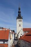 Rote Dachspitzen in Tallinn Stockbilder