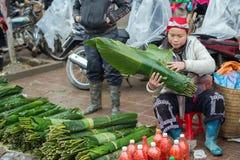 Rote Dao-Frau in Sapa, Vietnam Lizenzfreies Stockfoto