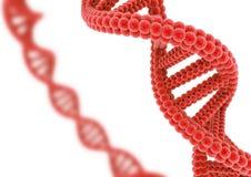 Rote DNA lokalisiert auf einem weißen Hintergrund Lizenzfreies Stockbild