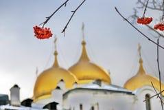Rote Ebereschenbeere und Dormitions-Kirche von Moskau der Kreml Stockbilder