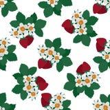 Rote Erdbeerblätter Stockfoto