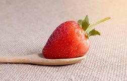 Rote Erdbeere Lizenzfreies Stockbild
