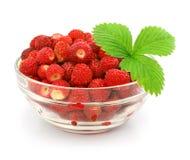 Rote Erdbeere trägt mit Blättern im Glasvase Früchte Stockfoto