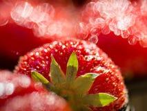 Rote Erdbeeren Lizenzfreies Stockbild