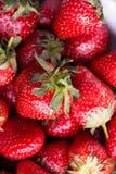 Rote Erdbeernahaufnahmeansicht Stockbilder