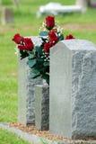 Rote ernste Blumen Stockfoto