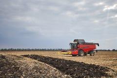 Rote Erntemaschine, die auf einem Gebiet arbeitet Stockfoto