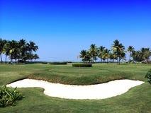 Rote Fahne auf dem Gebiet für Golf mit Palmen Lizenzfreies Stockfoto