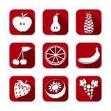 Rote Farbe der gesetzten Art der Frucht der Ikone flachen Stockfotos