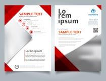 Rote Farbe des geometrischen Dreiecks der Broschüren-Schablone mit Bild backgr Stockbild