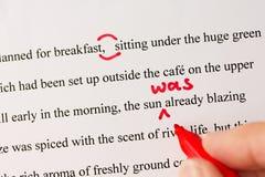 Rote Feder, die eines Manuskriptes durch Laptop liest Lizenzfreie Stockfotos