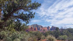 Rote Felsen in Arizona Stockbilder