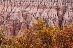 Rote Felsen in der Schlucht im Fall Lizenzfreie Stockfotografie