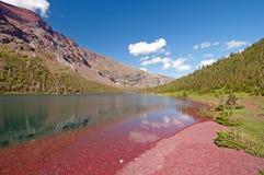 Rote Felsen des Rosen-Bassins stockfoto