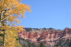 Rote Felsen-Gelb-Blätter Lizenzfreie Stockfotografie