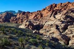 Rote Felsen-Schlucht-Nationalpark Nevada Lizenzfreies Stockfoto