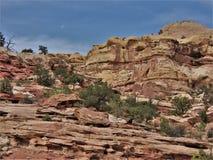 Rote Felsen von Schlucht-Kanten Lizenzfreies Stockbild