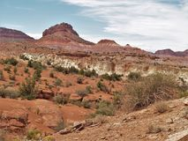 Rote Felsen von Schlucht-Kanten Stockfotos