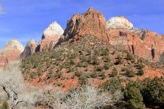 Rote Felsenlandschaft in Zion National Park, Utah Stockbilder