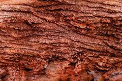 Rote Felsenoberfläche für Beschaffenheitshintergrund lizenzfreies stockbild