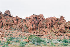 Rote Felsenschlucht Nevada USA Lizenzfreie Stockbilder
