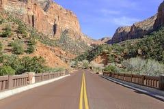 Rote Felsenschlucht und Berge, Zion National Park, Utah Stockbilder