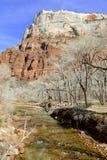 Rote Felsenschlucht und Berge, Zion National Park, Utah Lizenzfreies Stockbild