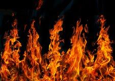Rote Feuer auf schwarzem Hintergrund stockfotografie