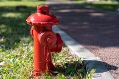 Rote Feuerbekämpfung auf dem Wiesen-Hydranten stockfoto