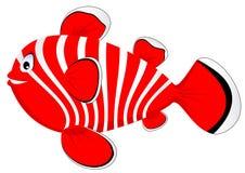 Rote Fische Lizenzfreie Stockfotos
