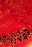Rote Fleischwassermelone mit Samen lizenzfreie stockfotografie