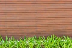 Rote Fliese, Backsteinmauerhintergrund mit grünem Gras Stockfotografie