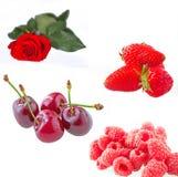 Rote Früchte Lizenzfreie Stockbilder