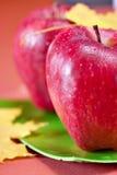 Rote frische Äpfel Lizenzfreies Stockfoto