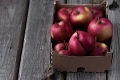 Rote frische Äpfel auf einem hölzernen Hintergrund in einer Pappschachtel lizenzfreies stockbild