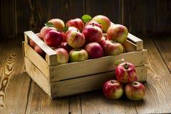 Rote frische Äpfel auf einem Holztisch stockfoto
