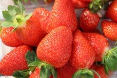 Rote frische Erdbeeren auf dem Gebiet geschmackvoll Stockfotos