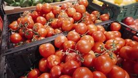 Rote frische organische Tomaten auf Niederlassung im Korb auf einem Supermarktregal stock footage