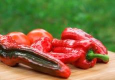 Rote frische Pfefferfrüchte Stockbild
