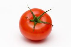 Rote frische Tomate Lizenzfreies Stockbild